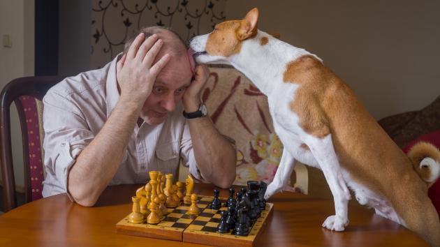 És Um Bom Jogador de Xadrez?
