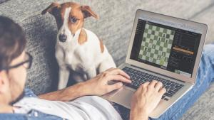 Supporting Each Other on Chess.com
