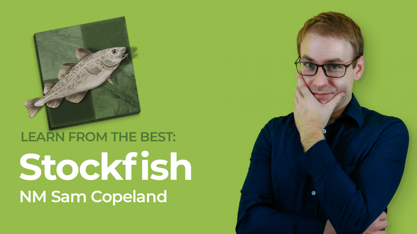 Learn From The Best: Stockfish