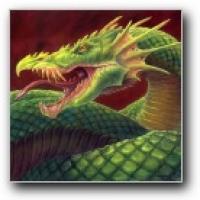 Dragon on Opposite Sides