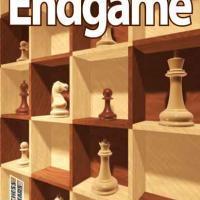 Endgame studies
