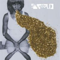 Santigold While Playing
