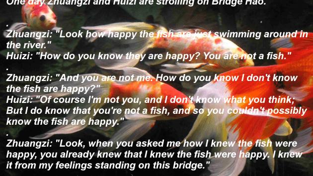 _快乐的鱼_