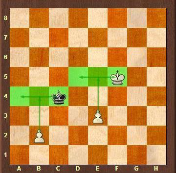 Endgame - Pawn Endings - Key Fields for the Kings