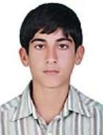 http://www.hamid1373dehloran.iran.sc/