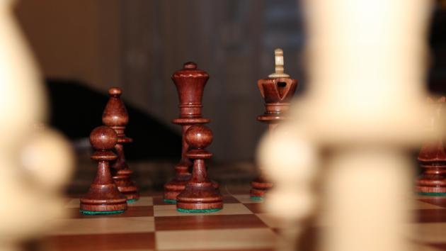 Мои шахматные композиции