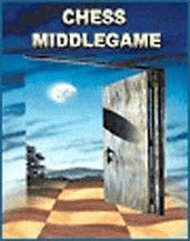 How to Play the Middlegame