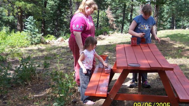 Repainting The Picnic Table