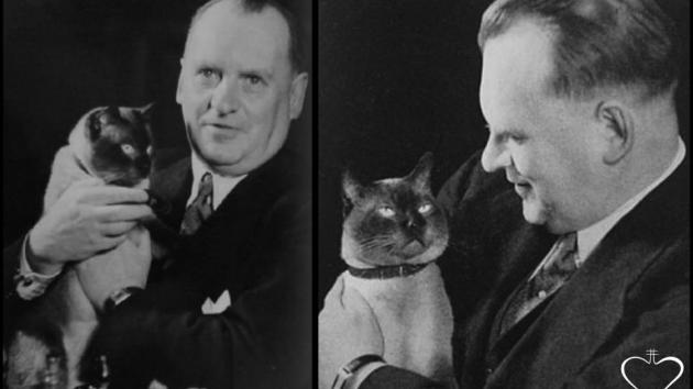 Alekhine loved cats