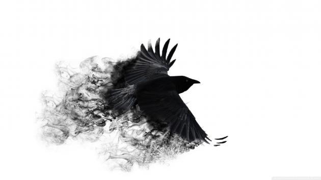 ..آدم پرنده ست