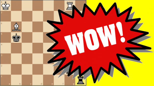 A Ridiculous Chess Problem