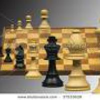 More on chess puzzles