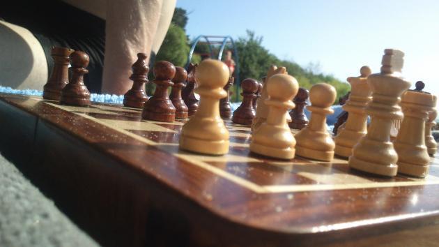 Летние тренировки по шахматам от ValeRock
