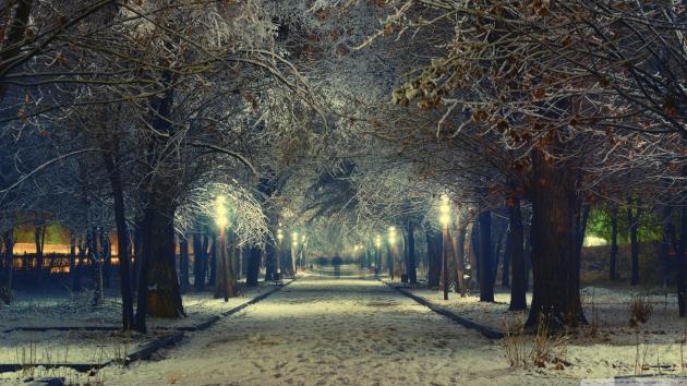 در شب سرد زمستانی