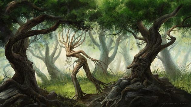 Tournament Adventures: Tree Doctor International