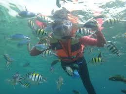 Pulau Tidung Snorkeling Di Pantai Pulau Seribu