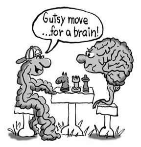 Chess is Bad for Your Mind