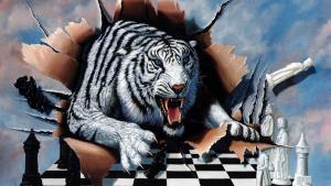 La mia biblioteca scacchistica
