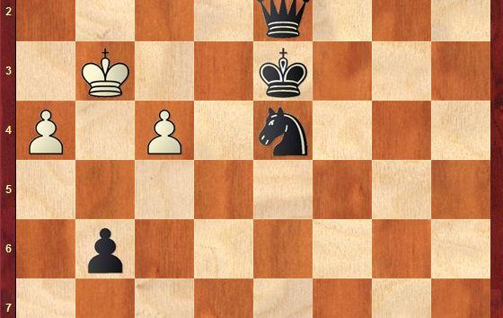 CHECKMATES OF THE DAY - 12.24.2014 - day 14