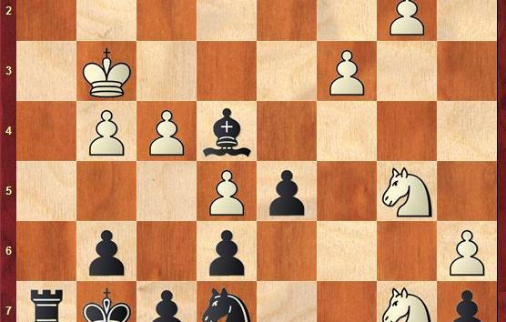 CHECKMATES OF THE DAY - 12.26.2014 - day 16