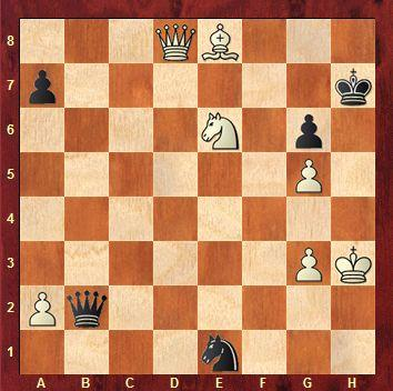 CHECKMATES OF THE DAY - 01.12.2015 - day 33
