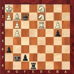 CHECKMATES OF THE DAY - 01.24.2015 - day 45