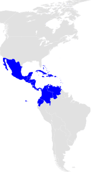 Campeonato Mundial de Ajedrez, Interzonales