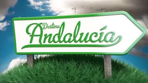 CON SABOR ANDALUZ   (Desde Alicante)