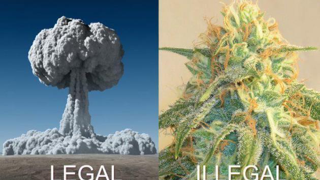 """Dentro de la Marihuana """"predujuicios"""""""