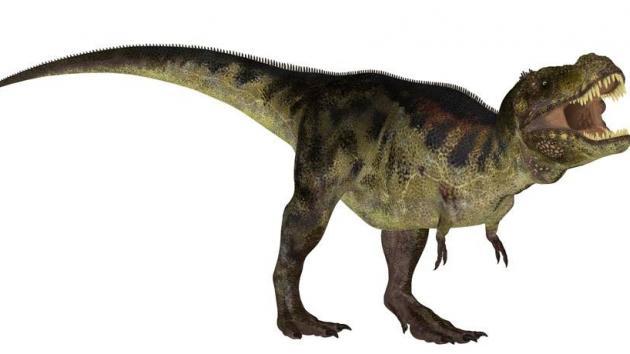 Weekly Dinosaur Blog #1