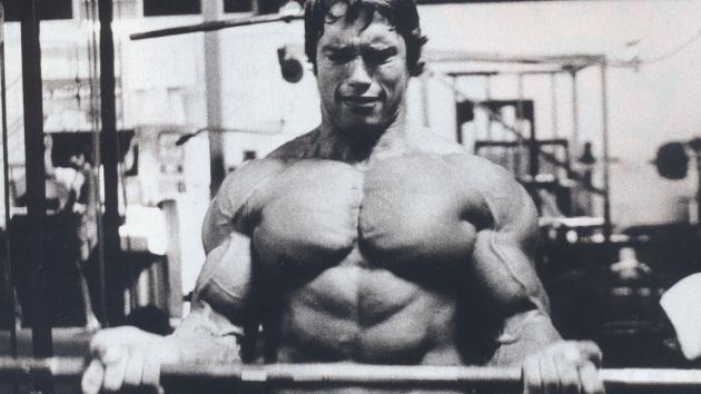 Arnold Schwarzenegger 0004