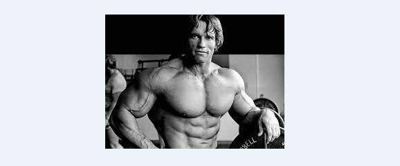 Arnold Schwarzenegger 0005
