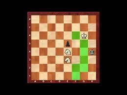 How to mate with two knights against king and a pawn?