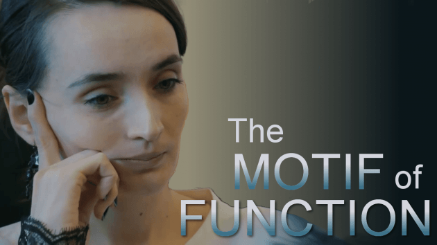 Practical Chess techniques: Motif of function