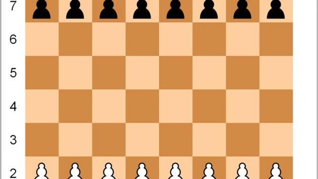 Șahul aleatoriu Fisher (Șah960)