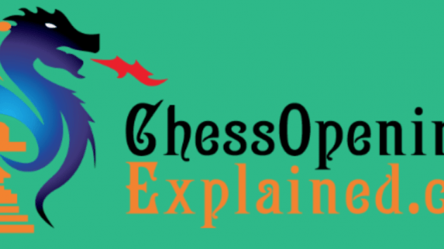 Loving my New Chess Gig!