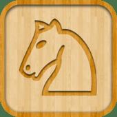 (18) ChessEssentials - level 5