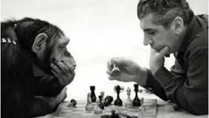 Chess Bughouse Strategy's Thumbnail