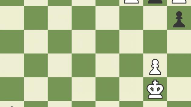 Información importante del ajedrez: edición española