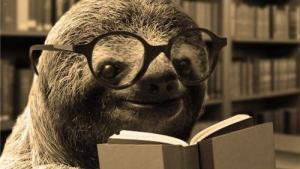 Sloth Thoughts Version I's Thumbnail