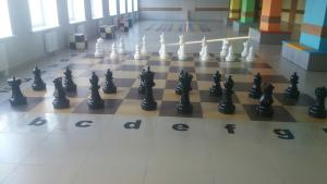 """The project """"Chess in school"""" in action's Thumbnail"""