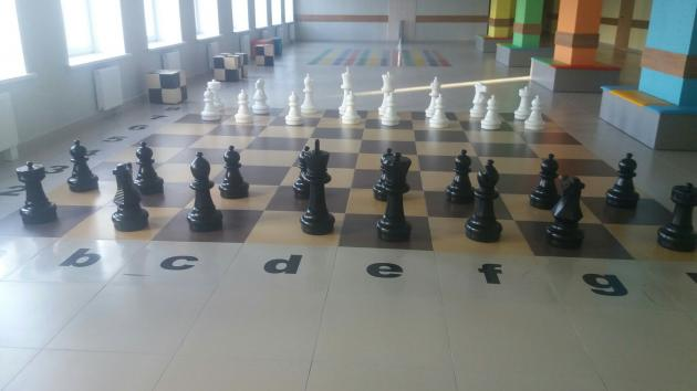 "The project ""Chess in school"" in action"