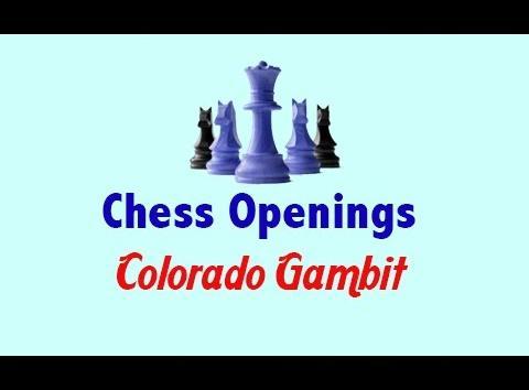Colorado Gambit