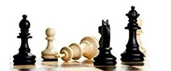 Review :  The secret of chess
