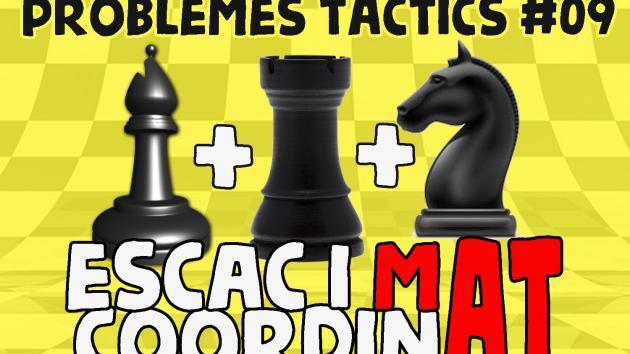 Escacs Problemes Tàctics #09 Escac i mat coordinat