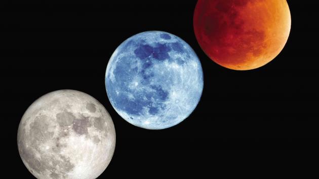 Favorite moon