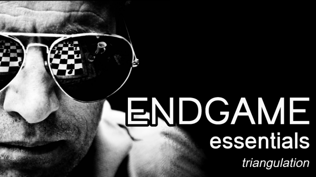 Endgame essentials : Triangulation