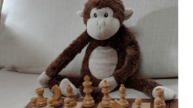 How to waste time while studying a chess opening