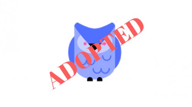 Adopt a Bird: ChessNerdBird.