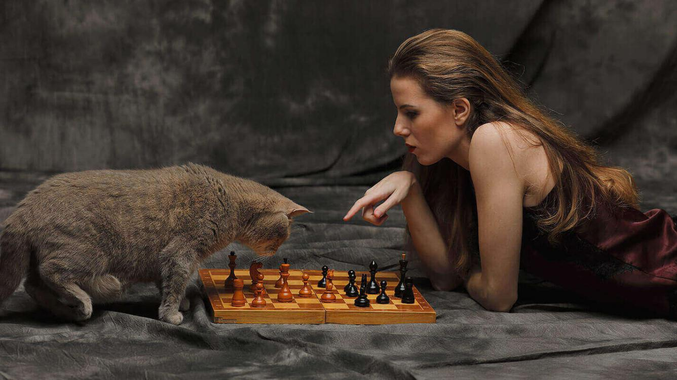The biggest mistake in chess